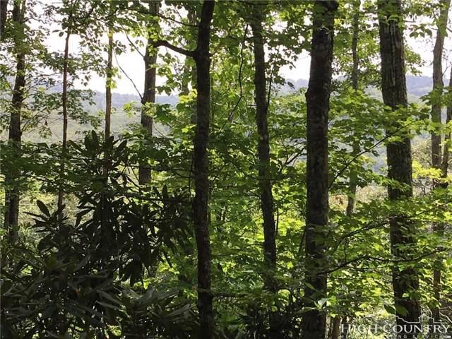 Lot 2 Fieldstone Heights Drive, Blowing Rock, NC 28605 (#39202690) :: Mossy Oak Properties Land and Luxury