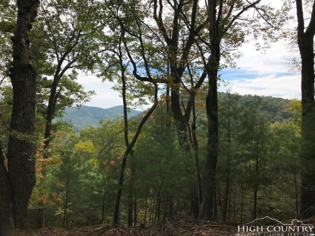 Lot #61 Farm View Drive, Vilas, NC 28692 (MLS #201982) :: Keller Williams Realty - Exurbia Real Estate Group