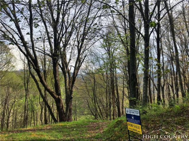 Lot 41 White Fox Lane, Banner Elk, NC 28604 (MLS #202407) :: Keller Williams Realty - Exurbia Real Estate Group