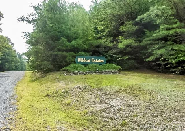 TBD Wildcat Estates Drive, Deep Gap, NC 28618 (MLS #202695) :: Keller Williams Realty - Exurbia Real Estate Group