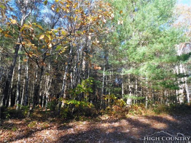 Lot 3 Storybook Lane, Sparta, NC 28675 (MLS #203125) :: Keller Williams Realty - Exurbia Real Estate Group