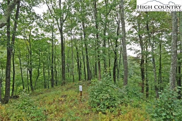 Tract A Bob Timberlake Drive, Boone, NC 28607 (#203495) :: Mossy Oak Properties Land and Luxury