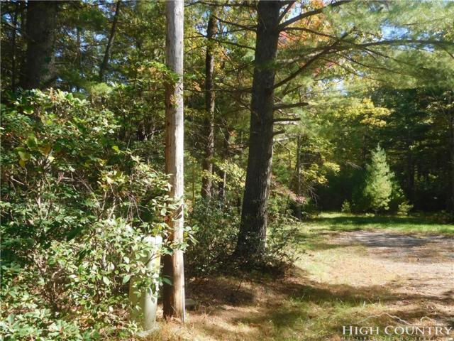 TBD Griffith Lane, Glade Valley, NC 28627 (MLS #203905) :: RE/MAX Impact Realty