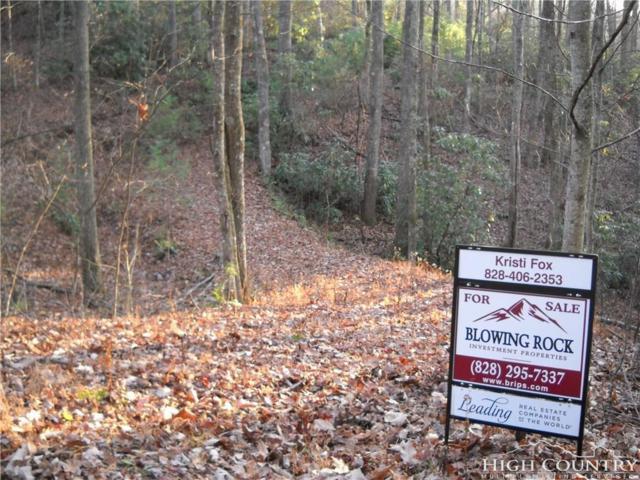 Lot 6 High Knolls Road, Fleetwood, NC 28626 (MLS #204296) :: Keller Williams Realty - Exurbia Real Estate Group