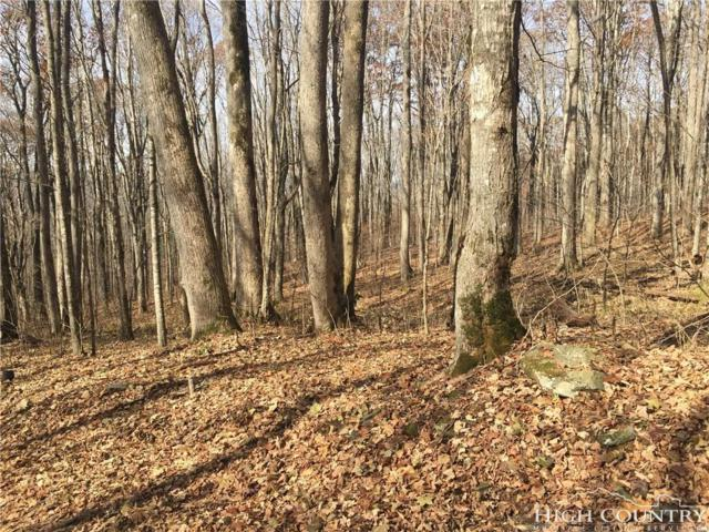 TBD Harley Perry Road Road, Zionville, NC 28698 (MLS #204413) :: Keller Williams Realty - Exurbia Real Estate Group