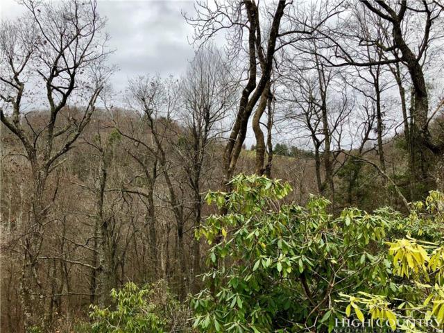 TBD Highland Ridge Road, Blowing Rock, NC 28605 (MLS #204517) :: Keller Williams Realty - Exurbia Real Estate Group