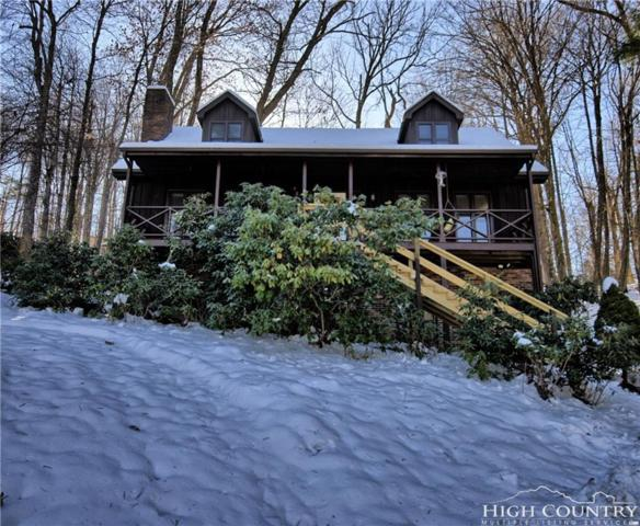 183 Rhododendron Lane, Boone, NC 28607 (MLS #204730) :: Keller Williams Realty - Exurbia Real Estate Group