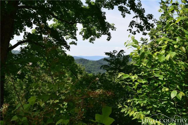 Lot 7 Pinnacle View, Elk Park, NC 28622 (MLS #204840) :: Keller Williams Realty - Exurbia Real Estate Group