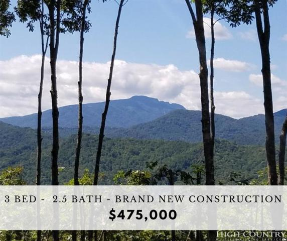 817 New Homestead Drive, Vilas, NC 28692 (MLS #205232) :: Keller Williams Realty - Exurbia Real Estate Group