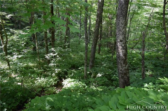 Lot 77 Rock Spring Circle, Sugar Mountain, NC 28604 (MLS #206344) :: RE/MAX Impact Realty