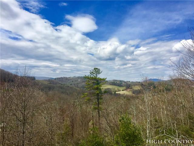 lot 27 Algonquin Drive, Boone, NC 28607 (MLS #206371) :: Keller Williams Realty - Exurbia Real Estate Group