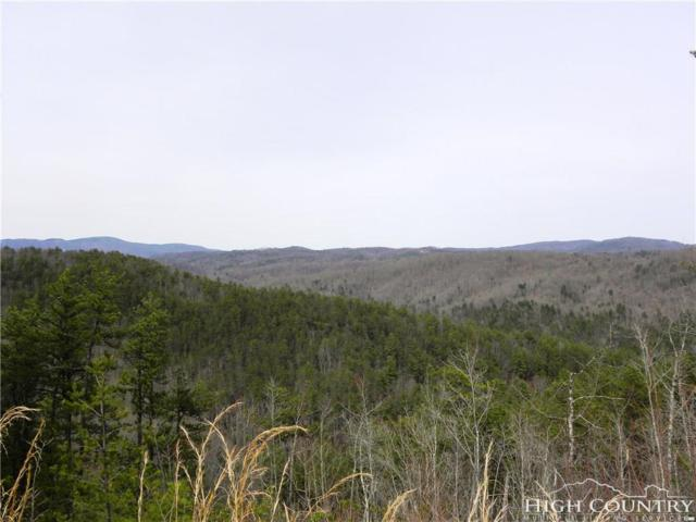 Lot 1332 Pogonia Road, Blowing Rock, NC 28607 (MLS #206676) :: Keller Williams Realty - Exurbia Real Estate Group