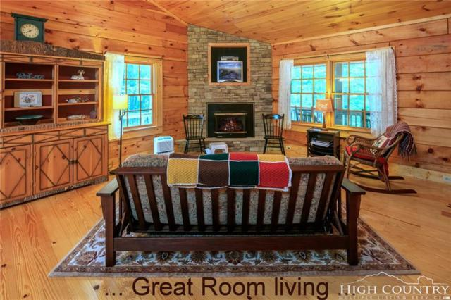 730 Silver Leaf Road, Zionville, NC 28698 (MLS #209163) :: Keller Williams Realty - Exurbia Real Estate Group