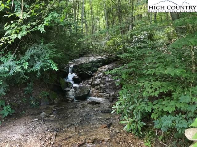141 Wild Daisy Lane, Beech Mountain, NC 28604 (#209193) :: Mossy Oak Properties Land and Luxury