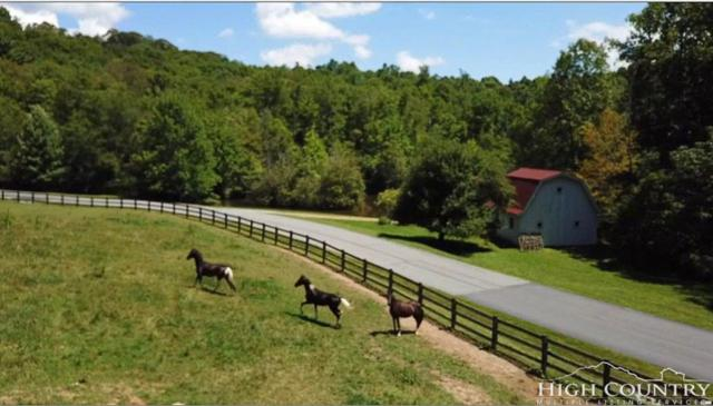 lot 65 Hialeah, Boone, NC 28607 (MLS #209201) :: Keller Williams Realty - Exurbia Real Estate Group
