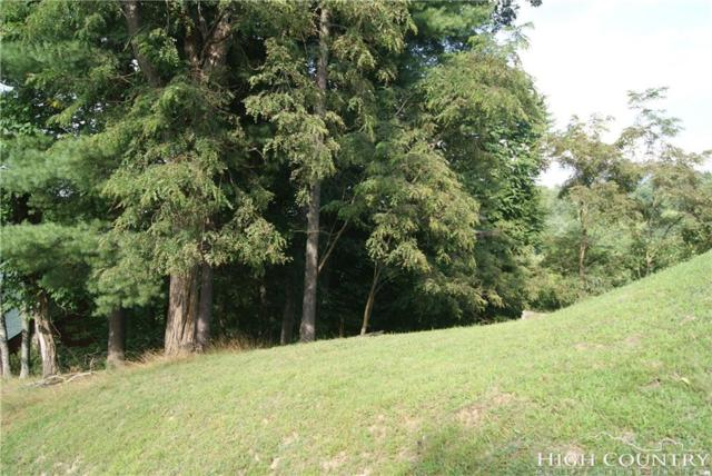 TBD Cotton Tail Lane, Piney Creek, NC 28663 (MLS #209457) :: Keller Williams Realty - Exurbia Real Estate Group
