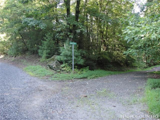 Lot 126 Buck Mountain Road, Purlear, NC 28665 (MLS #209646) :: Keller Williams Realty - Exurbia Real Estate Group