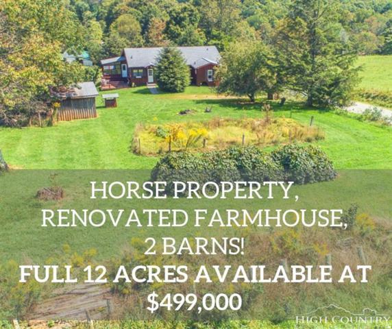 1240 Briarwood Lane, Boone, NC 28607 (MLS #210524) :: Keller Williams Realty - Exurbia Real Estate Group