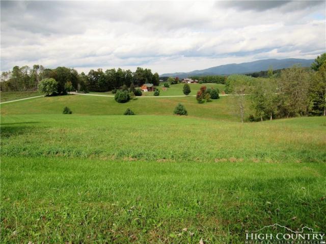 TBD Black Bear Ridge, Sparta, NC 28675 (MLS #210954) :: RE/MAX Impact Realty