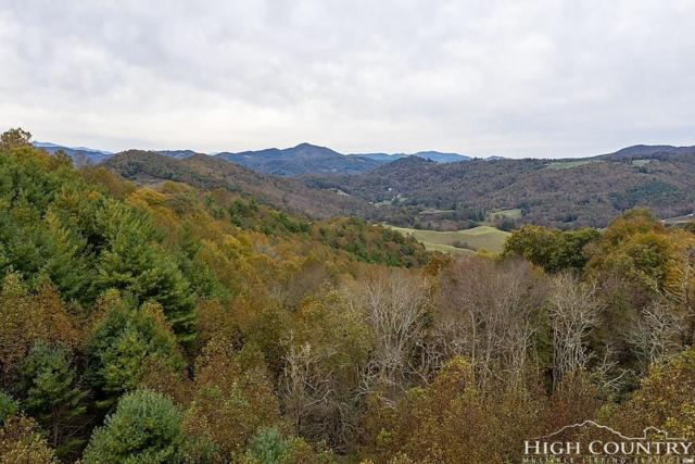 TBD Shady Acres Lane, Sugar Grove, NC 28679 (MLS #211263) :: Keller Williams Realty - Exurbia Real Estate Group