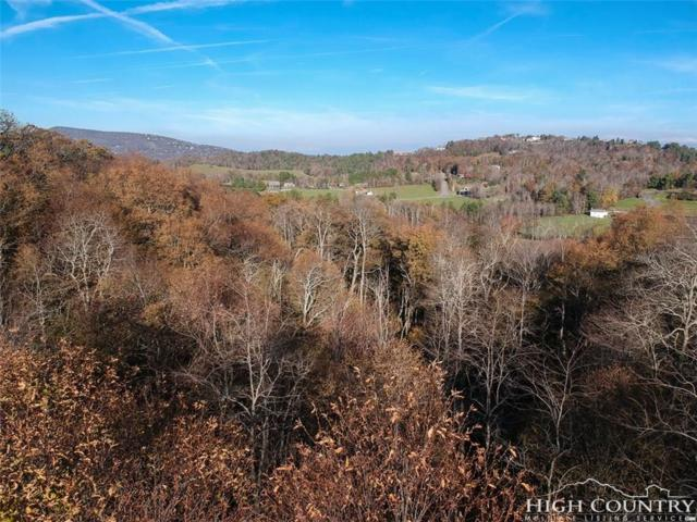 Lot 15 Center Court Drive, Boone, NC 28607 (MLS #211280) :: RE/MAX Impact Realty