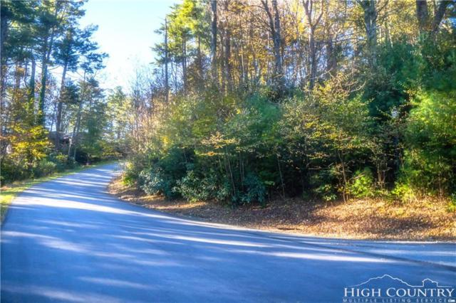 Lot 2 Edith Lane, Blowing Rock, NC 28605 (MLS #211369) :: RE/MAX Impact Realty