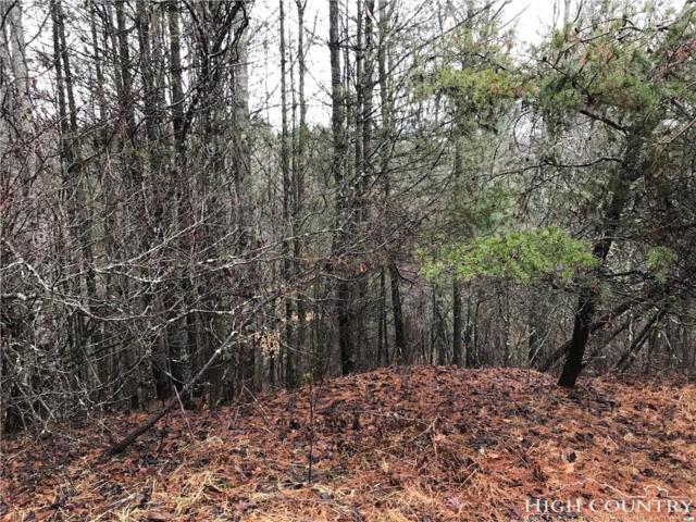 TBD Hillside Drive, Piney Creek, NC 28663 (MLS #212161) :: RE/MAX Impact Realty