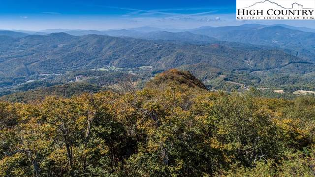 Lot 91 Emerald Forest Lane, Beech Mountain, NC 28604 (MLS #213100) :: RE/MAX Impact Realty