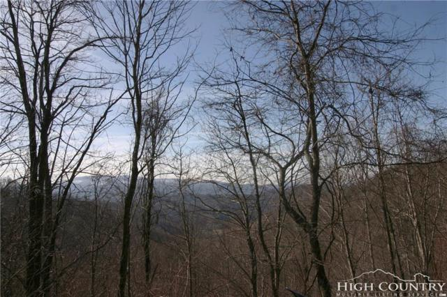 Lot 96 Shuck Pen Ridge Road, Vilas, NC 28692 (MLS #213892) :: RE/MAX Impact Realty