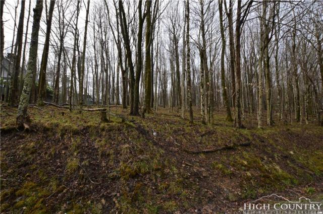160 Pond Creek Road, Beech Mountain, NC 28604 (MLS #214000) :: RE/MAX Impact Realty