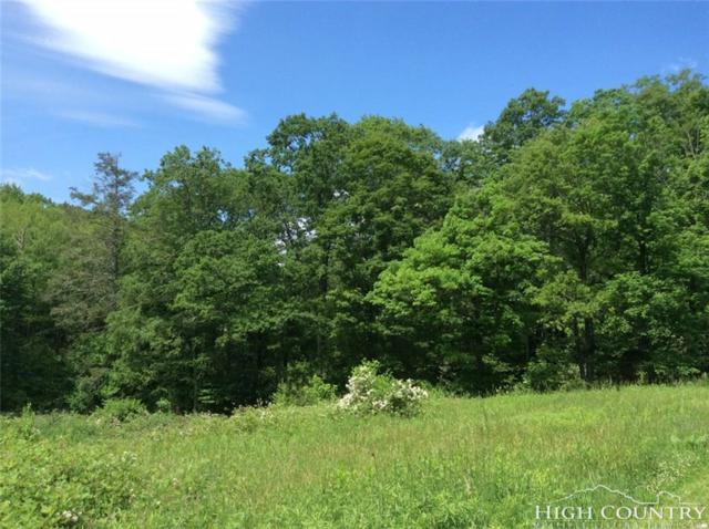 Lot 141 Timber Rock Road, Blowing Rock, NC 28605 (MLS #214608) :: RE/MAX Impact Realty