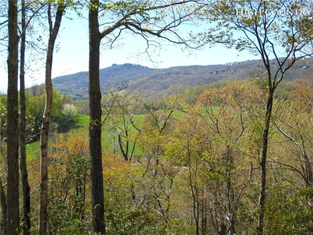 LOT 6 Horseshoe Creek Road, Banner Elk, NC 28604 (MLS #215929) :: RE/MAX Impact Realty