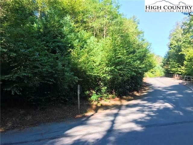 Lot #2 Edith Lane, Blowing Rock, NC 28605 (MLS #217896) :: RE/MAX Impact Realty