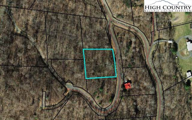 19 Bluff Canyon Drive, West Jefferson, NC 28694 (MLS #218055) :: RE/MAX Impact Realty