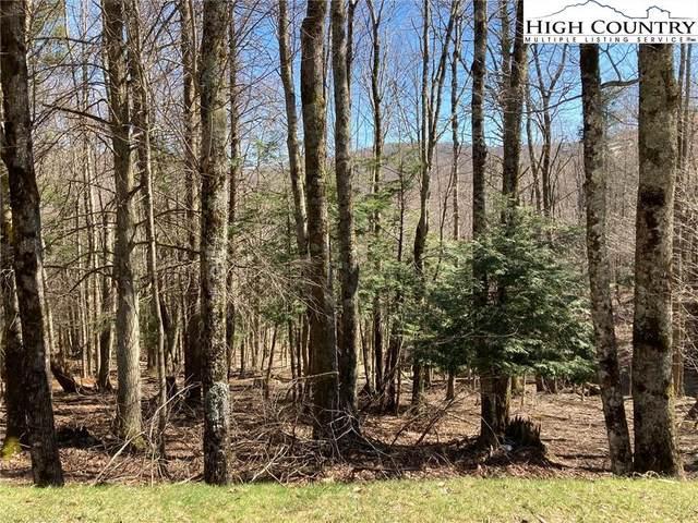 108 Grassy Gap Loop Road, Beech Mountain, NC 28604 (#219691) :: Mossy Oak Properties Land and Luxury