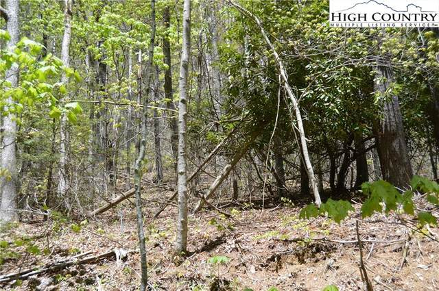 TBD Winterberry Trail, Boone, NC 28607 (#222221) :: Mossy Oak Properties Land and Luxury