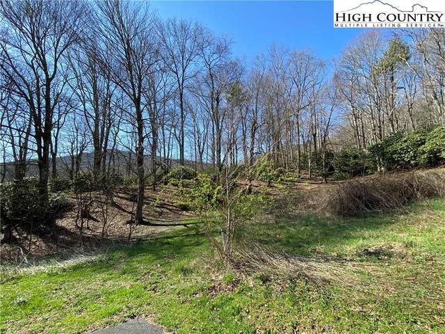 Lot 142 Timber Rock Road, Blowing Rock, NC 28605 (#222976) :: Mossy Oak Properties Land and Luxury