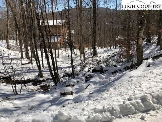 101 Foxgrape Hollow Road, Beech Mountain, NC 28604 (#227798) :: Mossy Oak Properties Land and Luxury