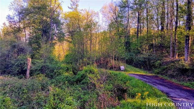 Tbd Forest Glen, Boone, NC 28607 (MLS #39206252) :: RE/MAX Impact Realty