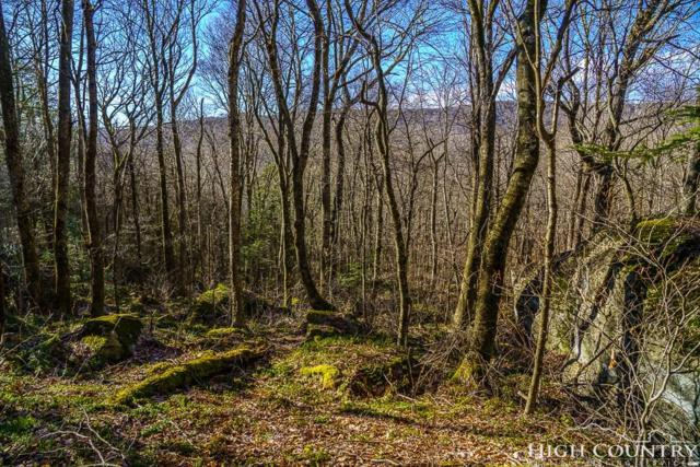 312 Dam Trail #3, Linville, NC 28646 (MLS #205227) :: Keller Williams Realty - Exurbia Real Estate Group