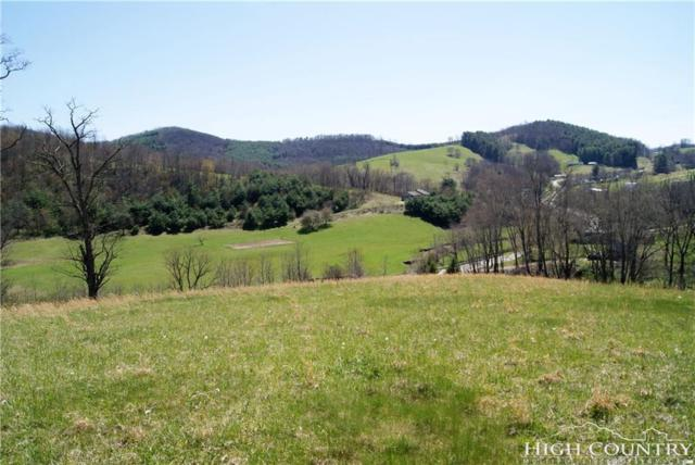 Lot 1 Laurel Mountain Estates Road, Sparta, NC 28675 (MLS #206772) :: RE/MAX Impact Realty