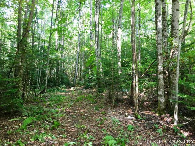 Lot 15 Chickasaw Trail, Blowing Rock, NC 28605 (MLS #210027) :: RE/MAX Impact Realty
