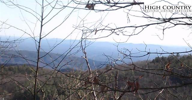 7668 Turtle Rock Road, Jonas Ridge, NC 28461 (#219953) :: Mossy Oak Properties Land and Luxury