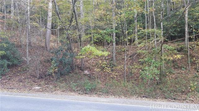 Tbd Mast Gap Road, Sugar Grove, NC 28679 (MLS #204104) :: RE/MAX Impact Realty