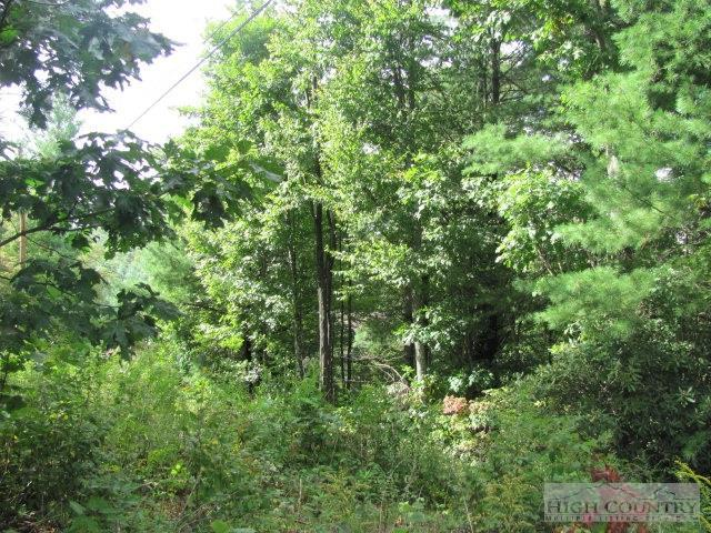 Lot #38 Nikanor Road, West Jefferson, NC 28694 (MLS #168961) :: Keller Williams Realty - Exurbia Real Estate Group