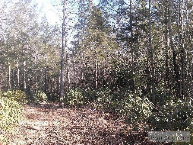 Lot 36 Chilhowee Camp Lane, Blowing Rock, NC 28605 (MLS #182852) :: Keller Williams Realty - Exurbia Real Estate Group
