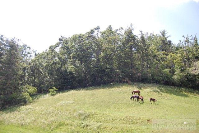 Lot #5 Churchill Downs, Boone, NC 28607 (MLS #185835) :: Keller Williams Realty - Exurbia Real Estate Group