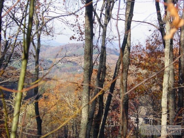 5R Highland Ridge Road, Blowing Rock, NC 28605 (MLS #186617) :: Keller Williams Realty - Exurbia Real Estate Group