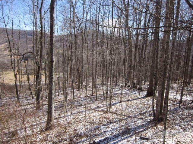 Tbd Elk Creek Mountain Parkway, Todd, NC 28684 (MLS #189548) :: Keller Williams Realty - Exurbia Real Estate Group