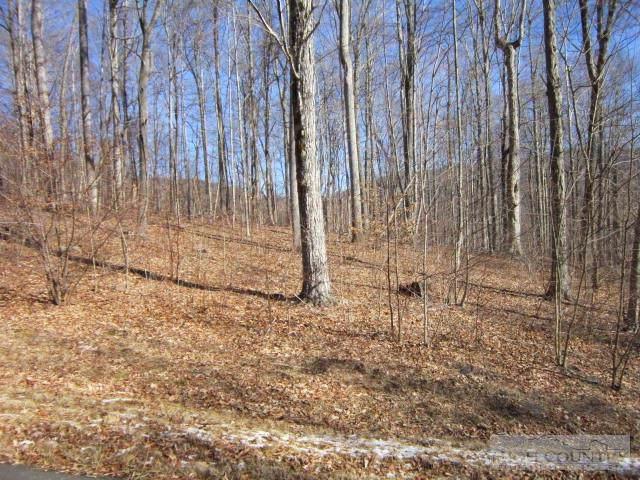 Tbd Elk Creek Mountain Parkway, Todd, NC 28684 (MLS #189549) :: Keller Williams Realty - Exurbia Real Estate Group